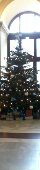 Christmas Tress